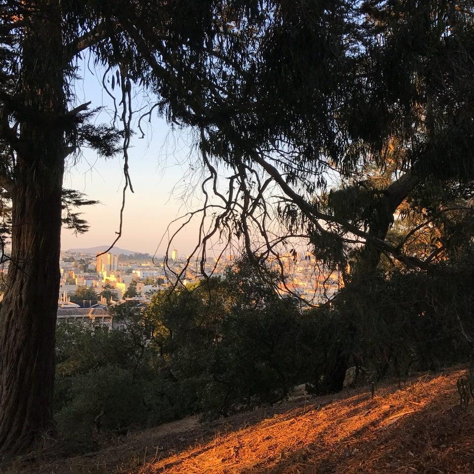Photo of Buena Vista Park