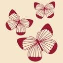 monica-cella-39295610
