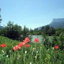 florian-bayern-20036623