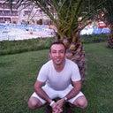 ayhan-kat-72750794