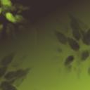 mustafa-yanaz-52044941