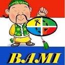 bmi-12724887