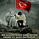 hayristan-46441369