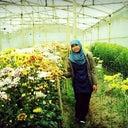 mohammad-fahmi-44859153