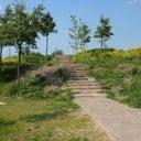 plan-willis-krommenie-71538579
