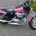 patrick-van-gendt-13128645