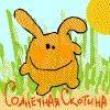 dmitry-medvedev-53142920