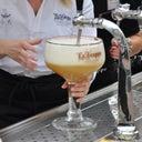 zoe-van-der-horst-8351886