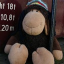 bob-smoochie-7996230