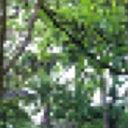 sigrid-stavenuiter-614631