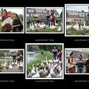 annemarie-van-den-broek-11677029