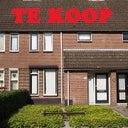 hans-van-den-boomen-4886889