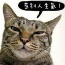 hui-chang-10749386