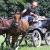 patrick-van-der-goot-17046908
