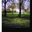 christiane-frohlich-15100978