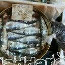 allegra-caico-15729039