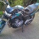 bart-s-4918440