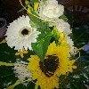 gabriele-peters-bluhm-9139627