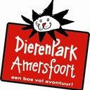 ingrid-van-dooren-12835653