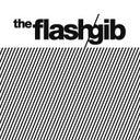 theflashgib-9686386