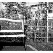 bastian-frohberg-12377009