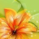 stefan-roseboom-16397771