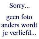 theo-van-lent-35338606
