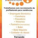 flor-45533737