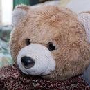 Teddy Lucu