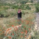 Fatma Kocak
