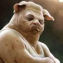 Grant Hamster