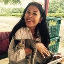 Sopha Lee