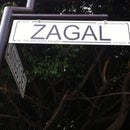 L Zagal