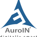 AuroIN Internet Marketing Company