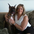 Aunt Darlene's Pet Sitting & Dog Walking Service,