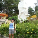 chen yiwei
