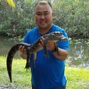 Sean Chunky Nguyen