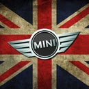 M S Mini