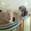 Maryam Alrefai