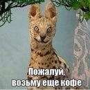 Яна Бубнова