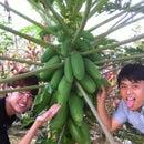 Liow Chia Nam