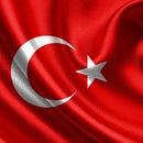 Mine Türk