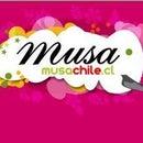 Musa Chile