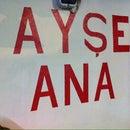 Ayşeana