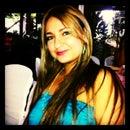 Diana L Velez
