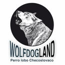 Wolfdogland Checoslovaco