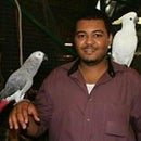 Mohamed Elkhabir