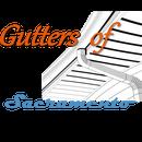Gutters of Sacramento