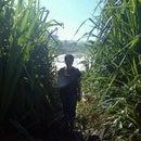 Rhama Nasution