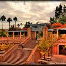 ASU's Tempe Campus
